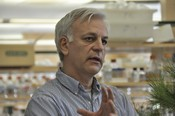 Jorge Dubcovsky UC Davis wheat breeder california wheat commission